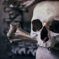 Magische Masken – Phönixnest 02.03.2019