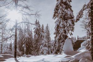 Heimkehr – Anastasyas Angst Teil 3