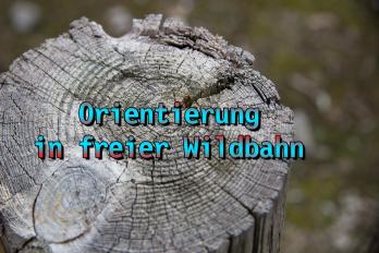 Wie man sich orientiert – Waldläufer Info #4