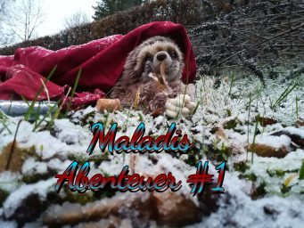 Das blendende Ding – Maladis Abenteuer #1