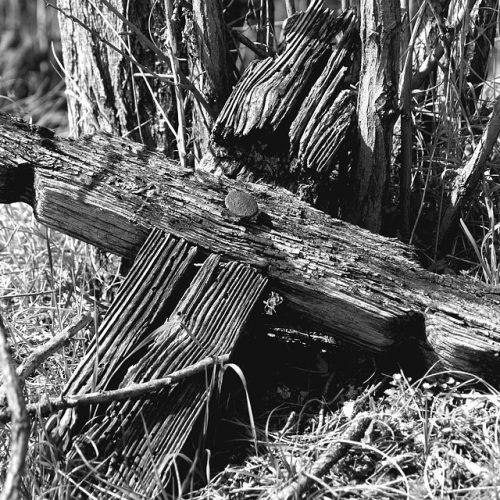 Holzkreuz am Friedhof